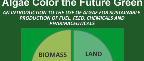 Algae Color the Future Green ebook at Amazon.com